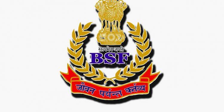 BSF NEWS